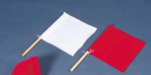 体育祭の紅白旗
