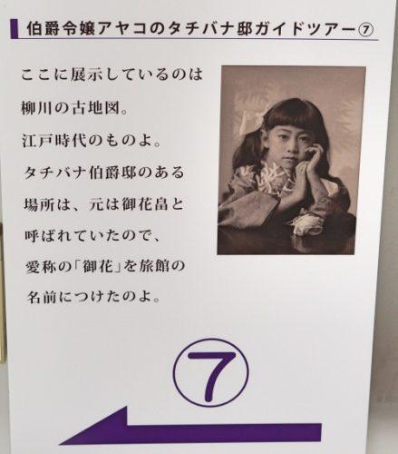 伯爵令嬢 アヤコさん